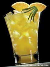 Screwdriver - Vodka suco de laranja e gelo seco