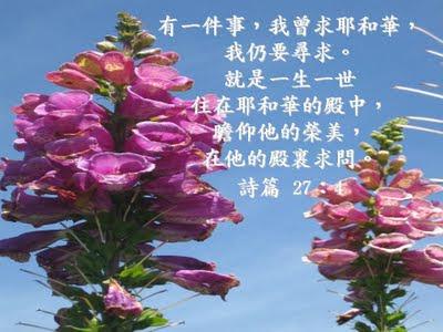 安得烈福音小站: 耶和華是我的牧者 (四)