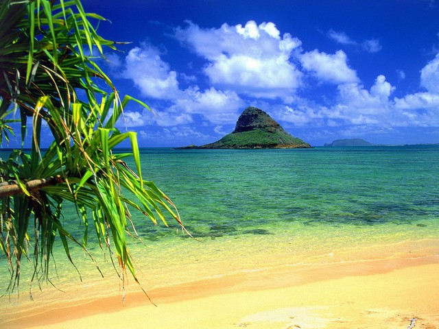 hawaii picture wallpaper. Honolulu Hawaii wallpaper. Postado por Mr free às 10:42 PM