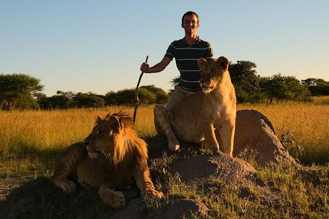 Posing with lions, Antelope Park, near Gweru, Zimbabwe