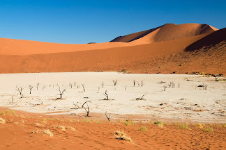 Dead Vlei, Namib-Naukluft National Park, Namibia © Matt Prater