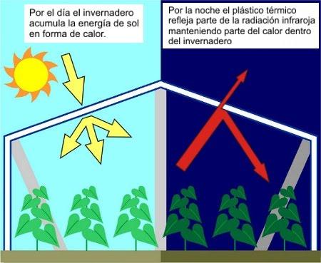 como funciona el invernadero