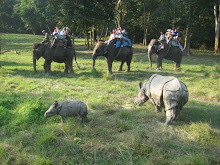 Elephant ride through Chitwan National Park