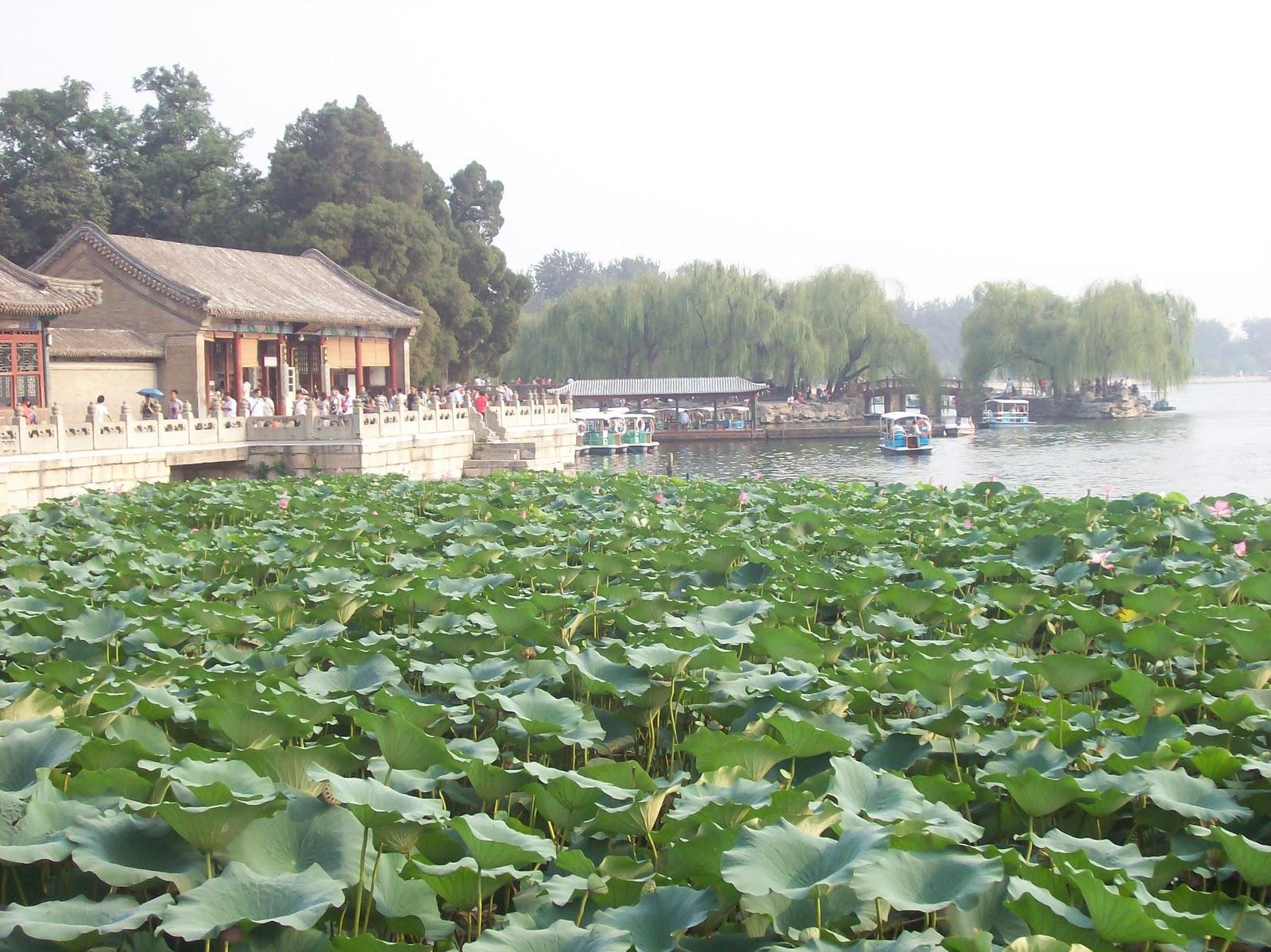 China un viaje so ado a la tierra de dragones enero 2011 for Jardin imperial chino