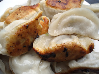 dumplings potstickers