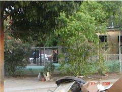 areas verdes por el lado de la plaza donde esta el simon bolivar