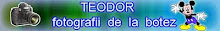Botez  Teodor