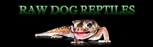 RAW DOG REPTILES
