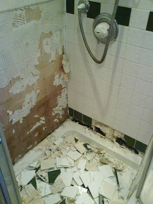 The tiles falling from our shower