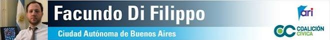 Diputado Facundo Di Filippo (ARI)
