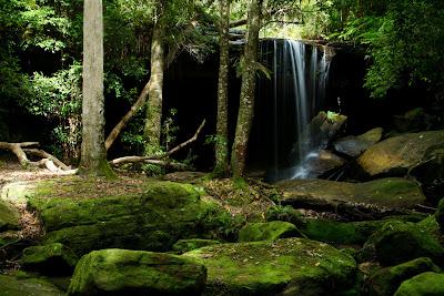 Oakland Falls - Hazelbrook, Australia