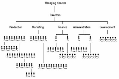Emilyemilyemilyemily organizational charts assignment crocs everybody under managing director is his span of control as the level goes up the span of control increases publicscrutiny Image collections
