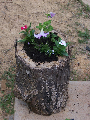 make it from scratch create a flower pot from a log