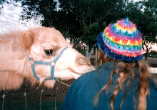 A rainbow hat for the girl from the Camel Farm