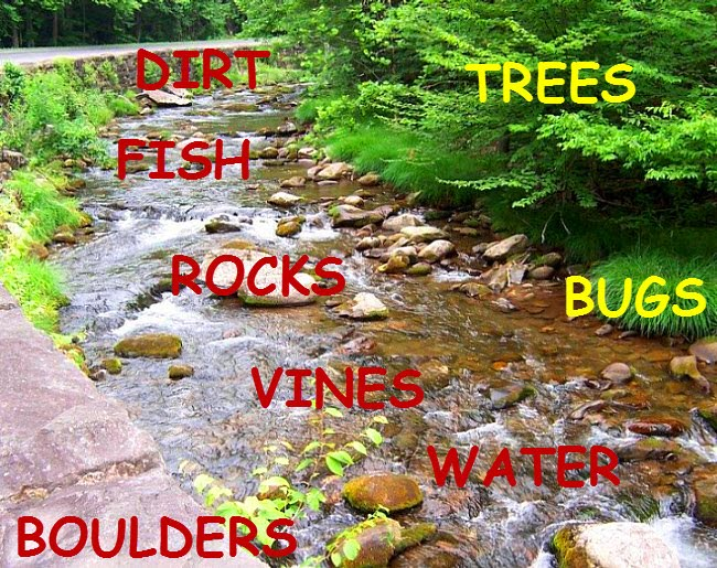 creek with all elements