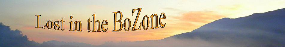 Lost in the Bozone
