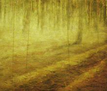 Neblina no Pinhal