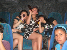 EFECTOS DEL ALCOHOLISMO