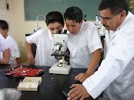 PLANES DE TRABAJO Y PROGRAMAS DE CIENCIAS MUY BIEN EXPLICADOS 2010