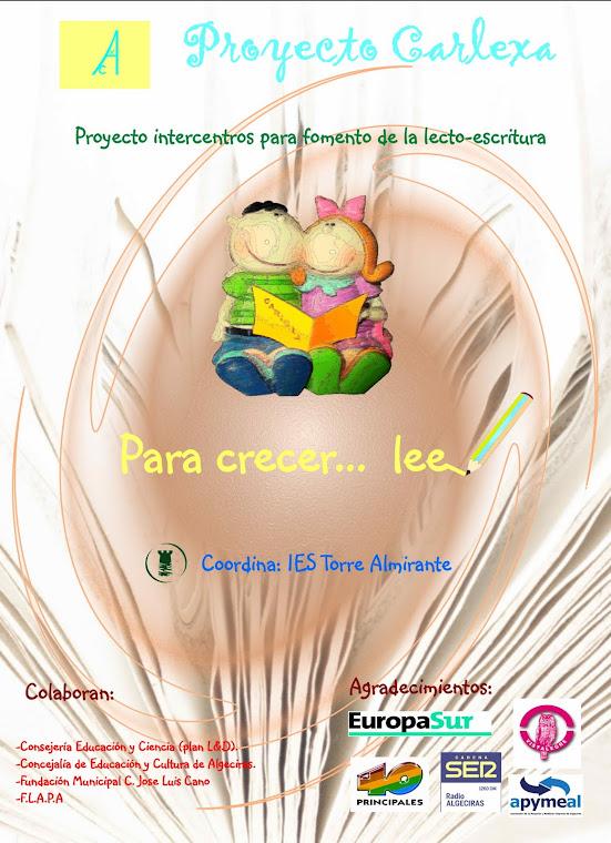 Proyecto Carlexa