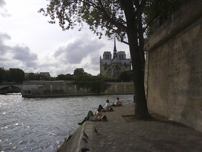 Sitting at the Saine and looking at the lower back of Notre Dame