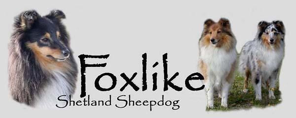 Foxlike