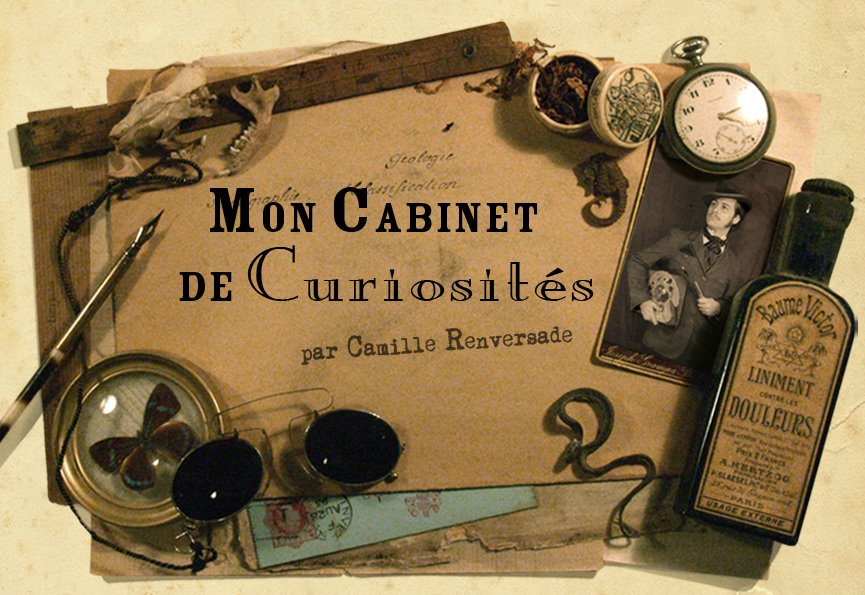 """Mon Cabinet de Curiosits"" par Camille Renversade"