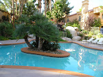 Relax!! Beautiful Las Vegas Vacation Rental
