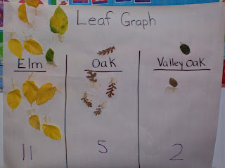learning and teaching with preschoolers nature walk