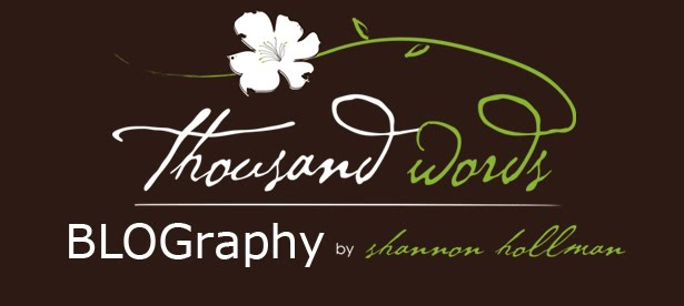 thousand words photography [the blog]
