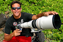 canon 600mm f:4