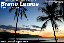 www.lemosimages.com