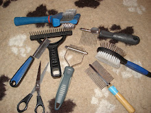 Kämm-Werkzeuge