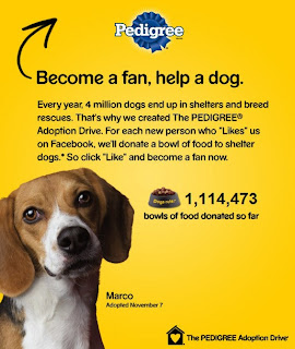 power of puppies video helps raise food for shelters nationwide