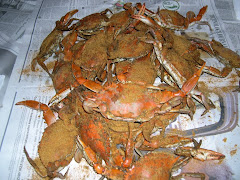Steamed Crabs Summer Time Fun