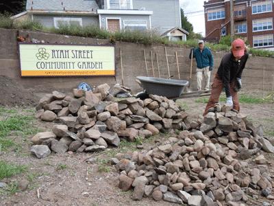 ryan street community garden  rockin project