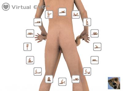 Virtual eve 3d