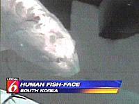 Ikan Guram Berwajah Manusia [ www.BlogApaAja.com ]