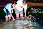 Bengt matar delfiner tillsammans med australisk delfinforskare