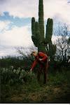 Arizonaöknen