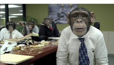 chimp%5B1%5D.jpg