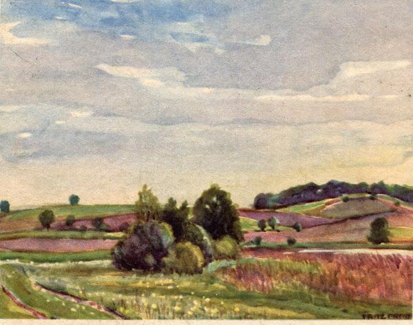 Fritz Preiss - In der Heide