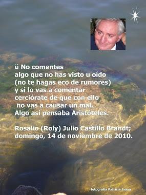 TEXTO ROSALIO CASTILLO