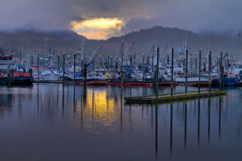 Light photographic workshops petersburg ak for Petersburg alaska fishing