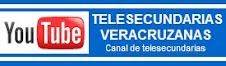 PROGRAMAS DE TELESECUNDARIA