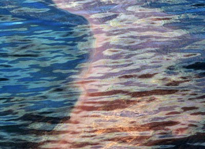 Gulf of Mexico oil spill - Threat to Environment & Wildlife