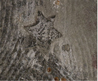 Poland Salt Mine Jewish star