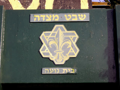 Star of David Scouts Logo