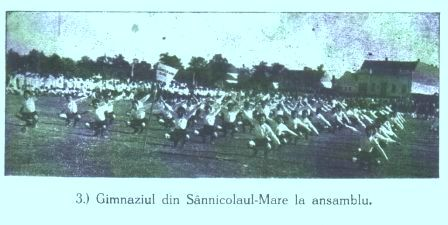 Gimnaziul din Sannicolau Mare