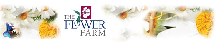 Check Out the Flower Farm's Classes and Events!